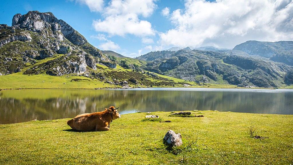 Imagen Lagos de Covadonga, Picos de Europa. Autoría: José Manuel García
